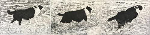 Chasing Gulls Triptych by Kevin Foley